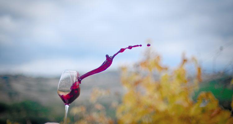 Che Vino